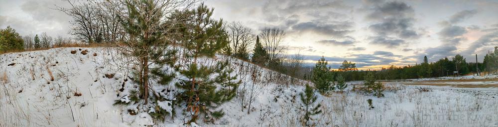 Snow Pine Tree Sunset Panorama