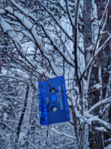 Blue Cassette Tape Skelotonized In Tree