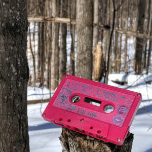 Pink Cassette in the Snow