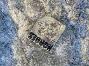 Hordes Cover of CD on Ice