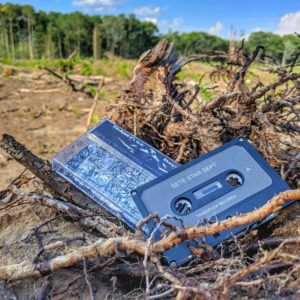 Cassette Tape in Clear Cut Forest