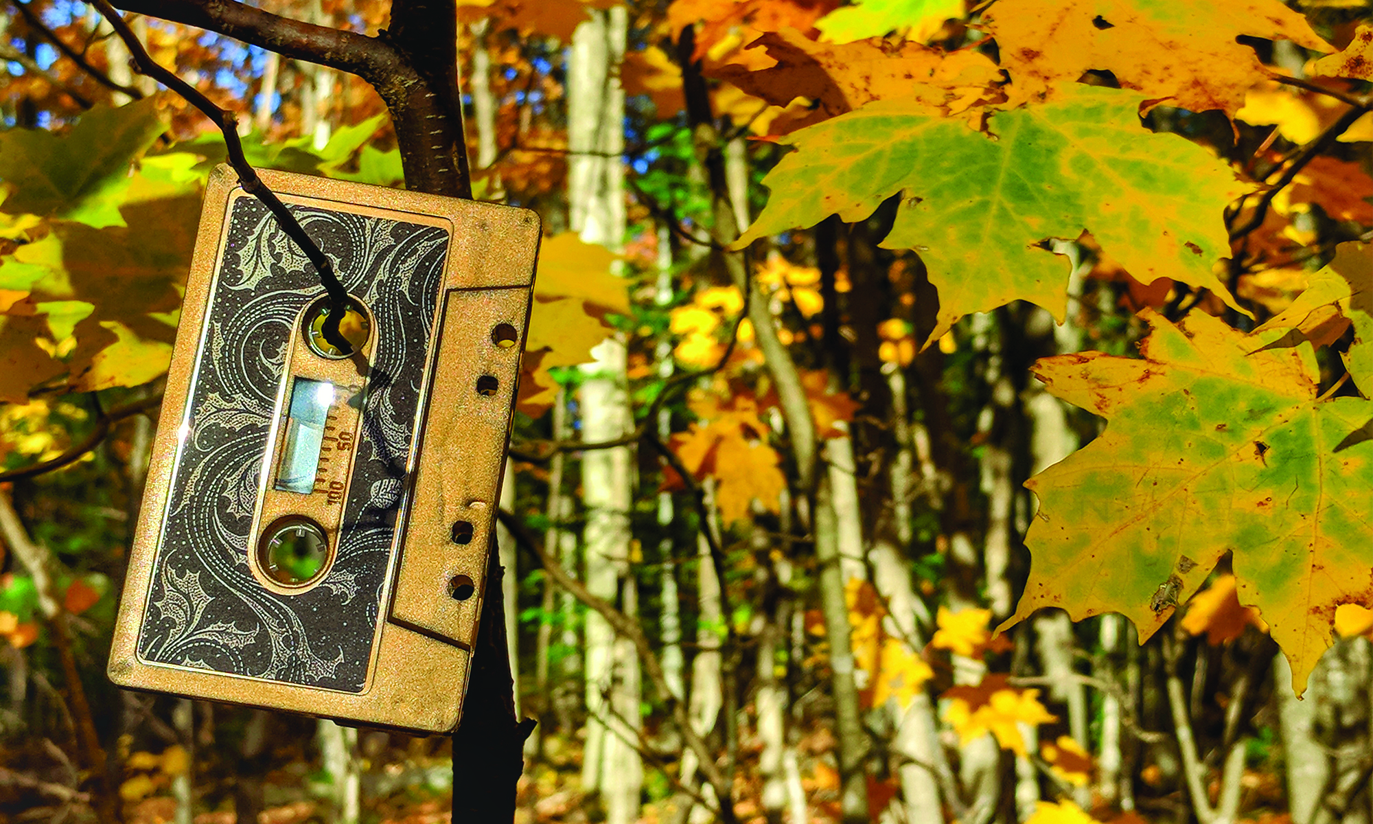 Reverb Adrenaline Cassette Tape Review - Northern Sludge