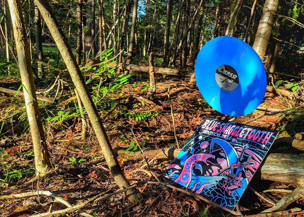 Vinyl in Woods Music Review