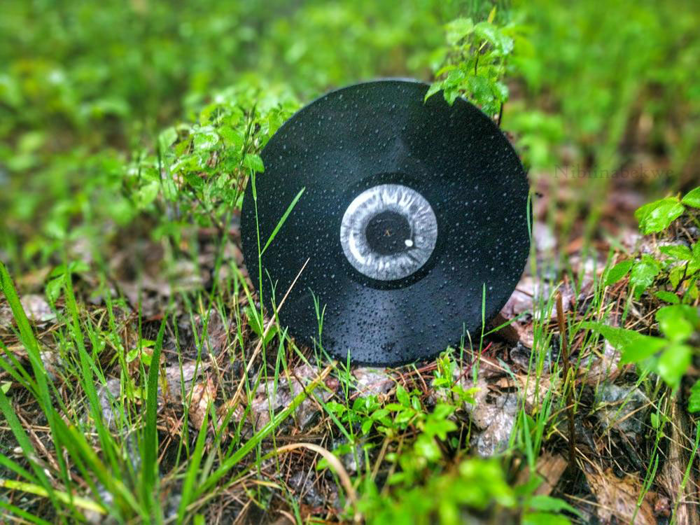 Vinyl Record in the Grass Music Review